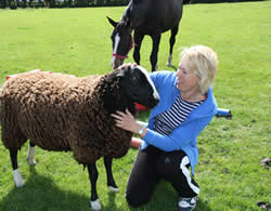 Maggie in front of hte Coach Houses with one of her sheep